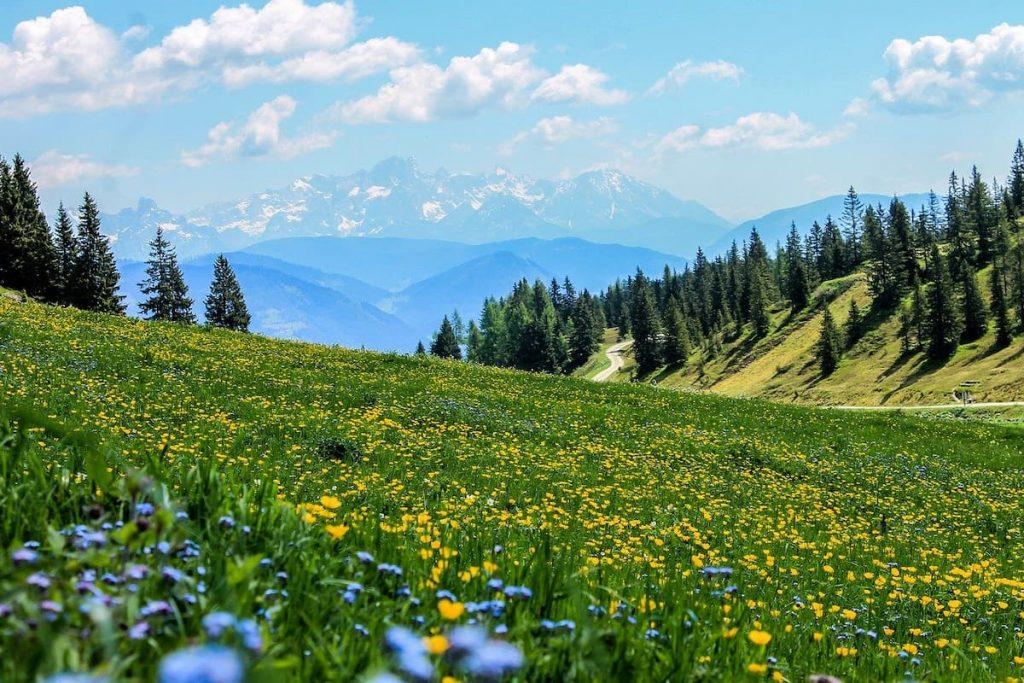 Benefici della montagna sul nostro organismo